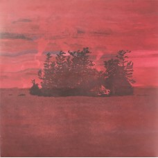 Besnard Lakes : Are The Devine Wind (12 Single)""