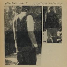Langille, Suzanne / Neel Murgai : Wild And Foolish Heart (Vinyl) Second Hand