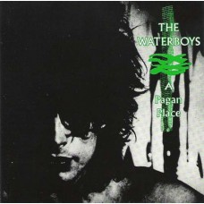 Waterboys : A Pagan Place (Vinyl) Second Hand