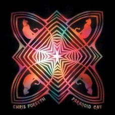 Chris Forsyth : Paranoid Cat (Vinyl)