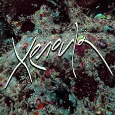 Xenoula : Xenoula (Vinyl)