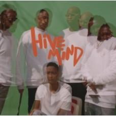 Internet : Hive Mind (Vinyl)