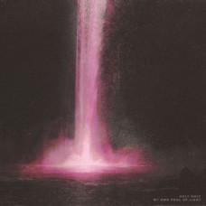 Holy Holy : My Own Pool Of Light (Vinyl)