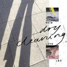 Dry Cleaning : New Long Leg (Vinyl)