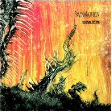Vihan Rytmi : Painajainen (Vinyl) Second Hand