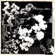 Ergo Phizmiz : Two Quartetes (Vinyl) Second Hand