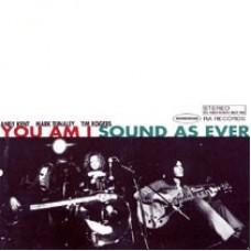 You Am I : Sound As Ever (CD)