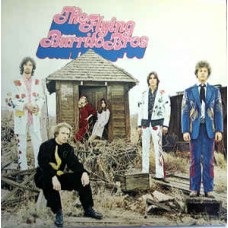 Flying Burrito Brothers : Gilded Palace Of Sin (Vinyl) Second Hand