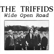 Triffids : Wide Open Road: The Best Of (CD)