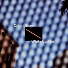 David Gray : White Ladder (Vinyl)