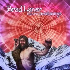 Brad Laner : Micro-Awakenings (Vinyl)