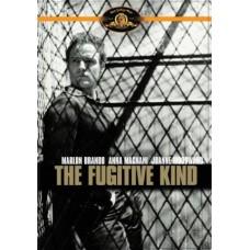 Fugitive Kind / Burn!: 2 Dvd Set : Fugitive Kind / Burn!: 2 Dvd Set (DVD)