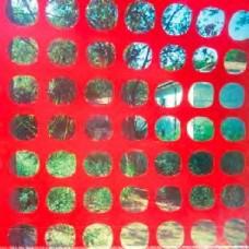 Dwyer, John / Ted Byrnes / Greg Coates : Endless Garbage (Vinyl)